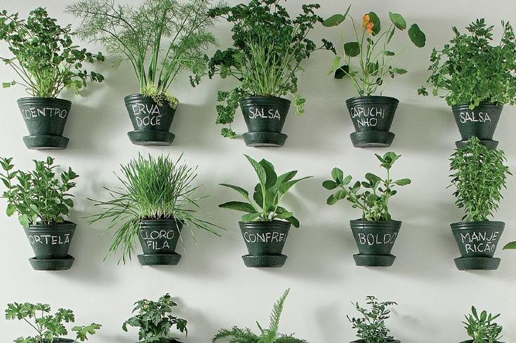 Horta suspensa feita com vasos simples.