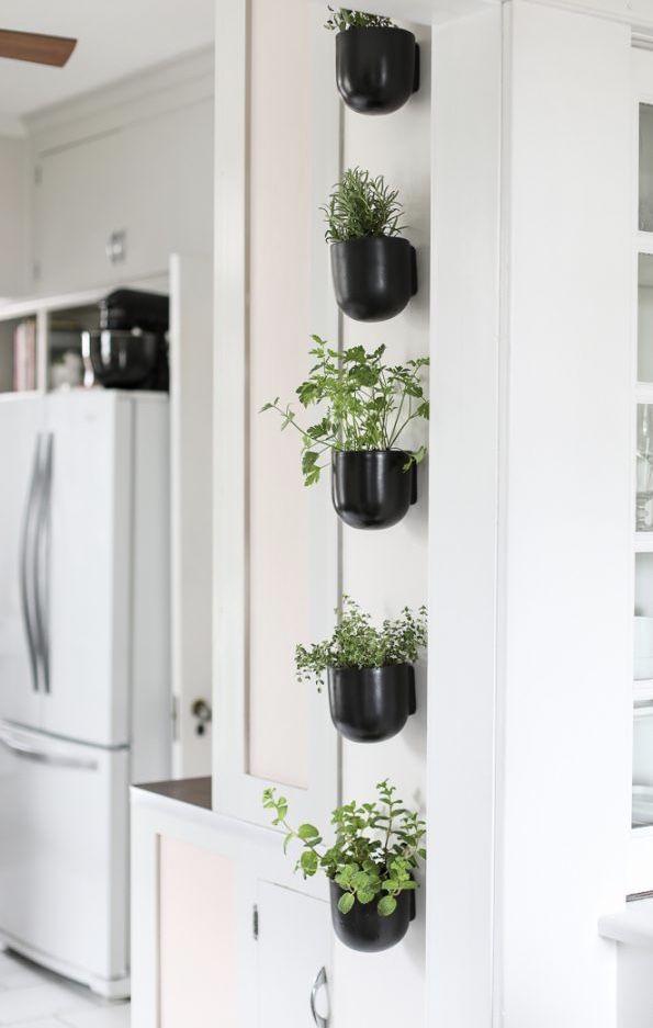 Horta vertical aproveitando todos os espaços da casa.