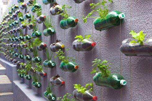 Horta suspensa feita com diversas garrafas pets.
