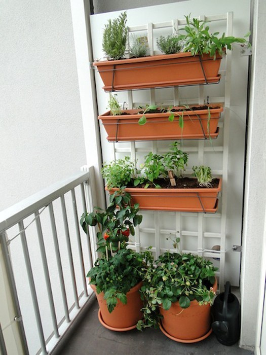 Vasos horizontais usados para construção de horta suspensa.