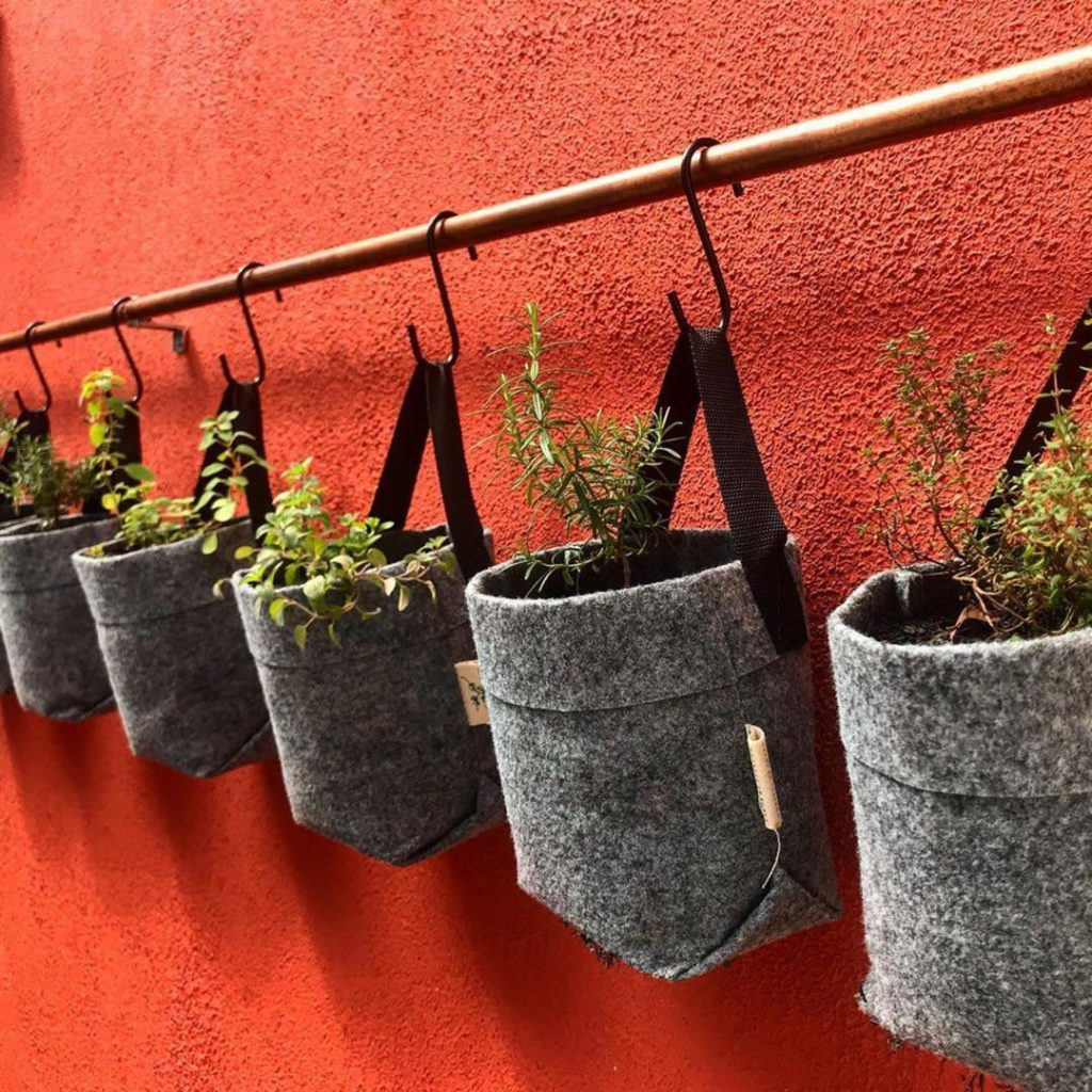Plantas colocadas em sacos de pano.