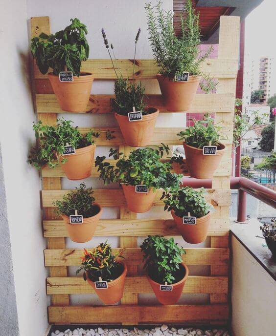 Vasos de planta pendurados em uma painel de pinus,