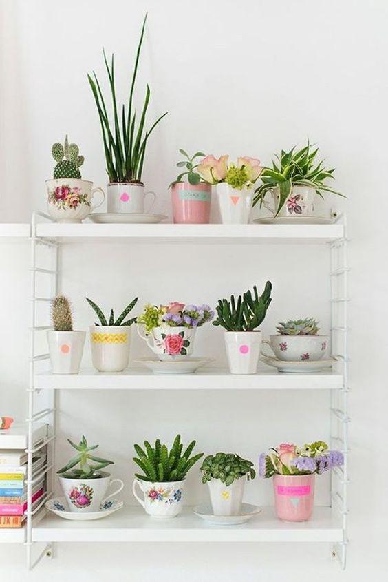 Jardins pequenos são a alternativa para quem quer verde em casa.