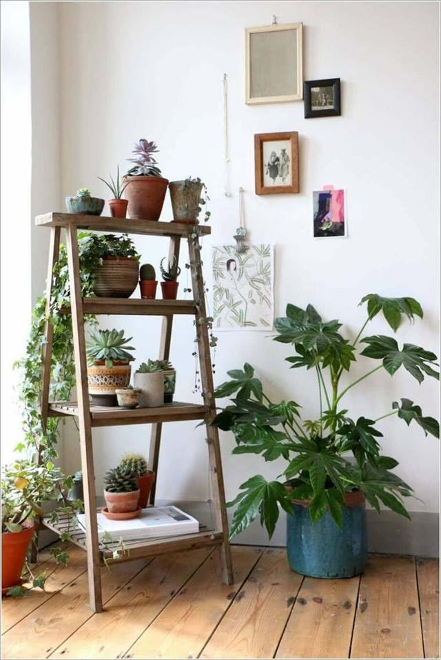 Jardins pequenos pedem soluções simples e criativas.