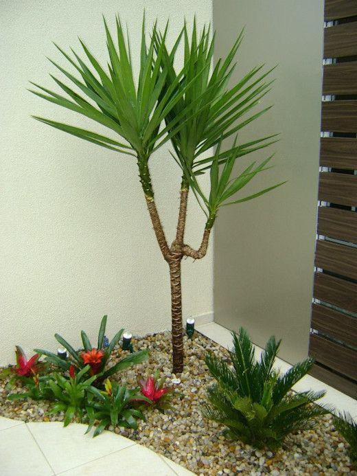 Jardim de canto, com seixos de rio, flores e palmeira.