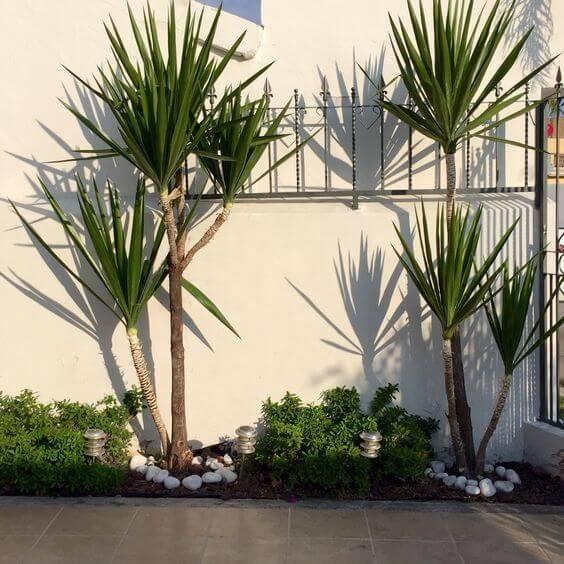 Jardins pequenos também podem ser construídos ao lado da garagem, como nesse projeto