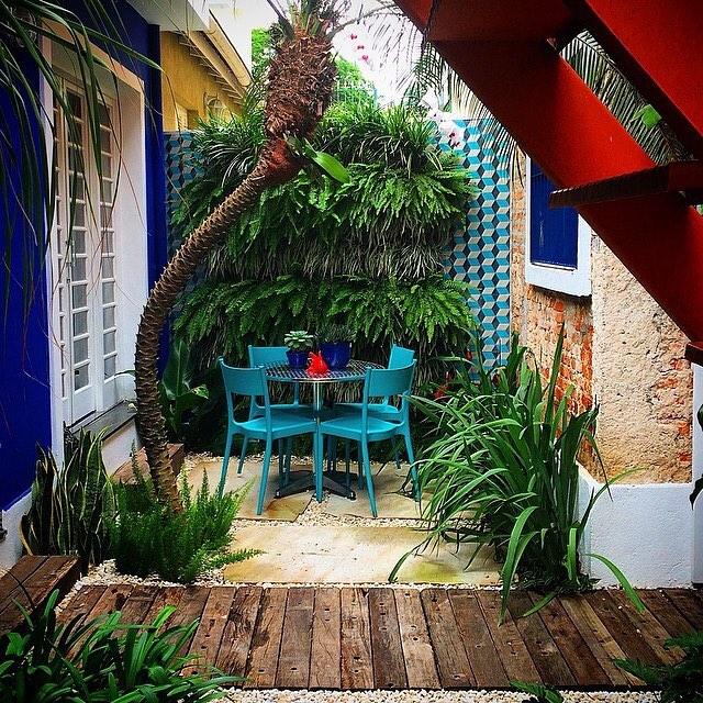 Jardim vertical com samambaias.