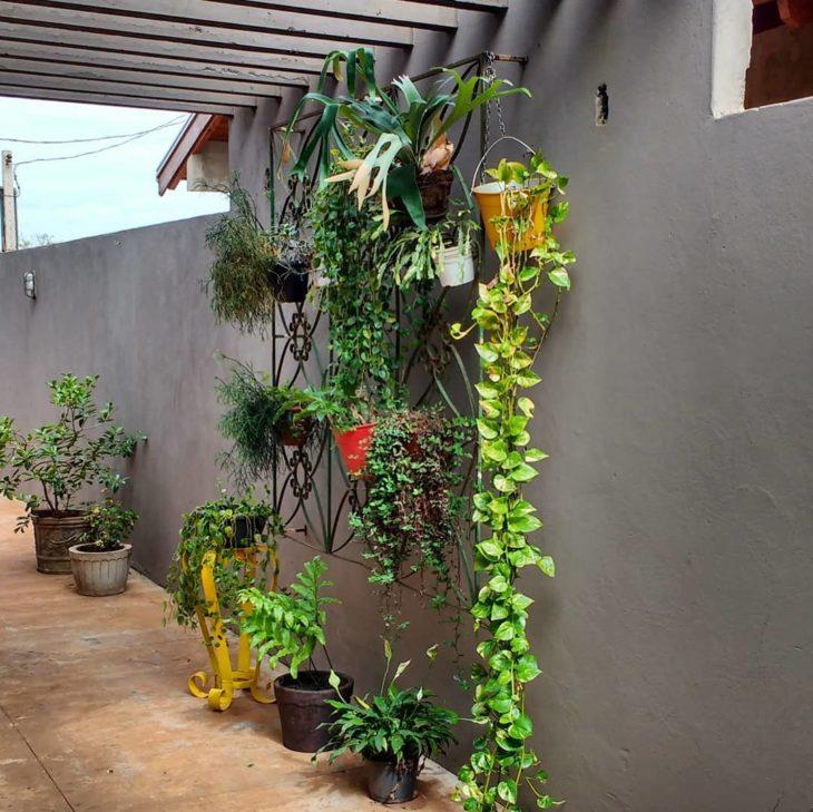 Jardins pequenos com reaproveitamento de materiais.