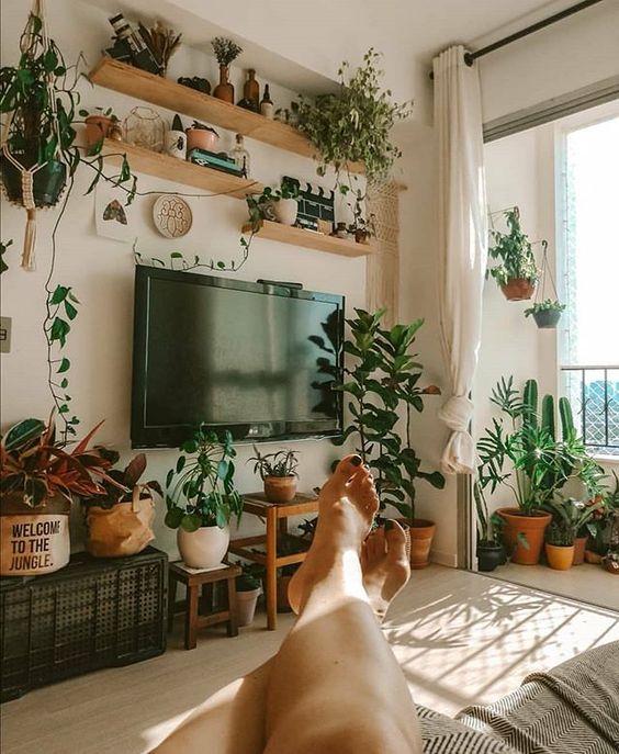 Apartamento com pequeno jardim na área social.