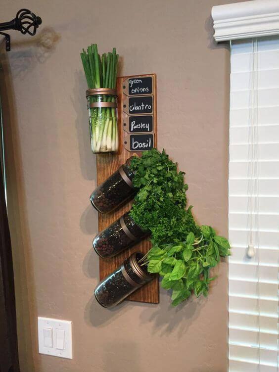 Plantas suspensas em recipientes de cozinha.