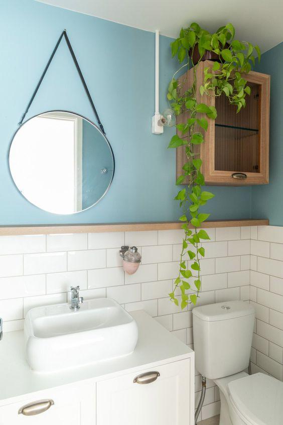 Vaso de planta cumprida em cima de armário.