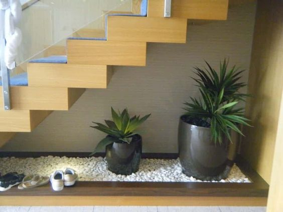 Jardim com espécies plantadas em vaso.