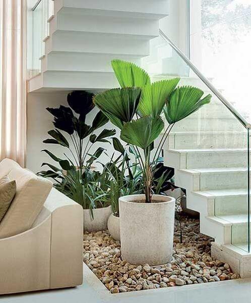 Espaço embaixo da escada aproveitado como jardim.
