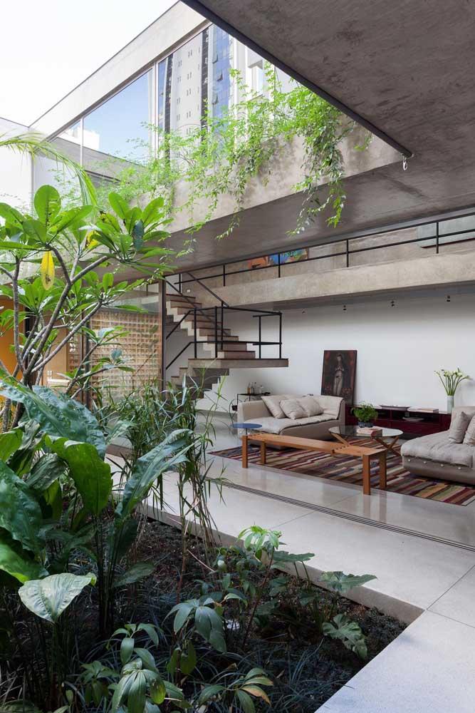 Amplo jardim de inverno  no centro do living integrado.