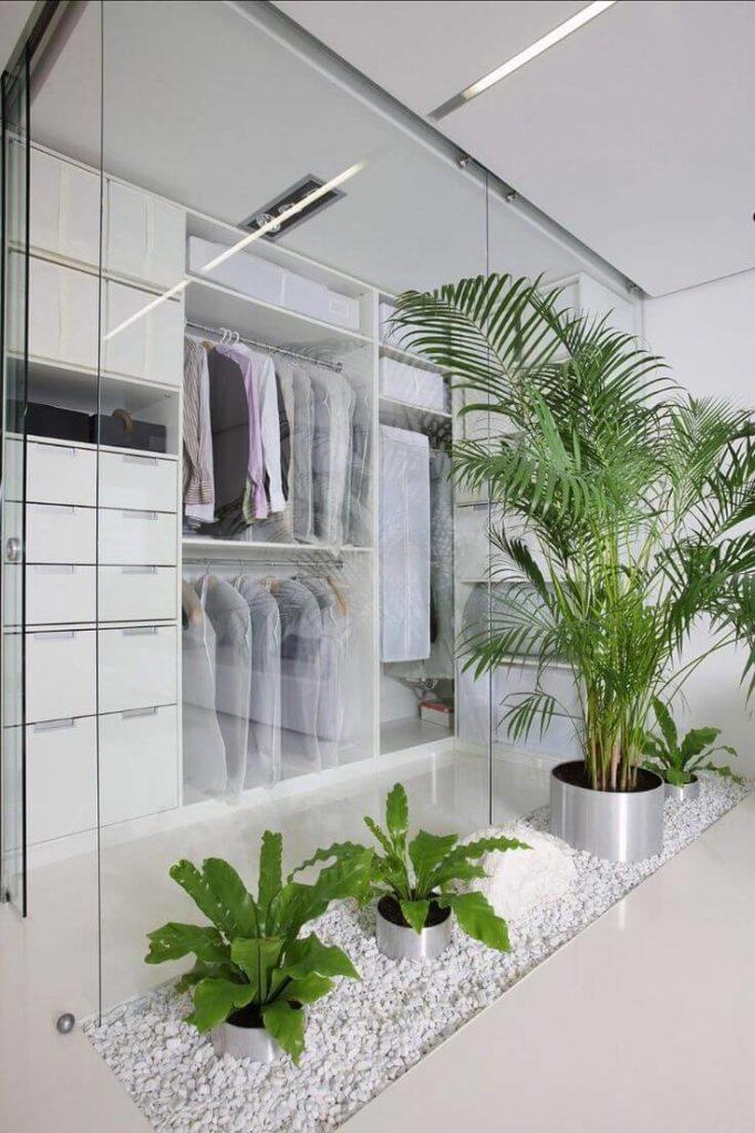 Closet com plantas em vasos.