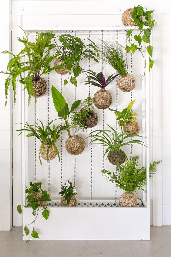 kokedamas em jardim vertical