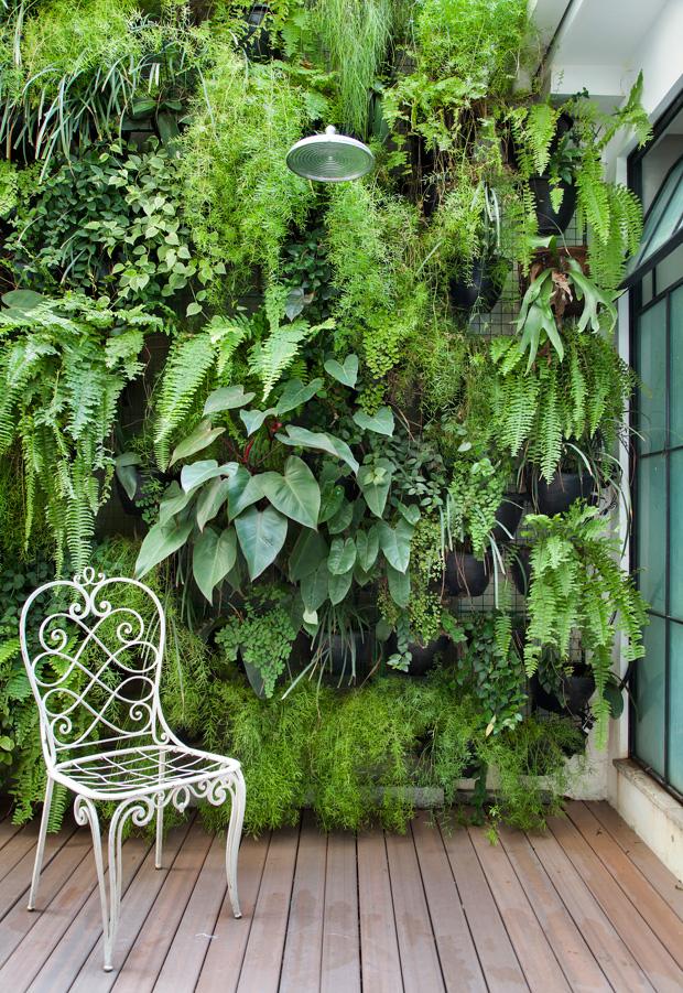 tela de aramado como suporte de plantas