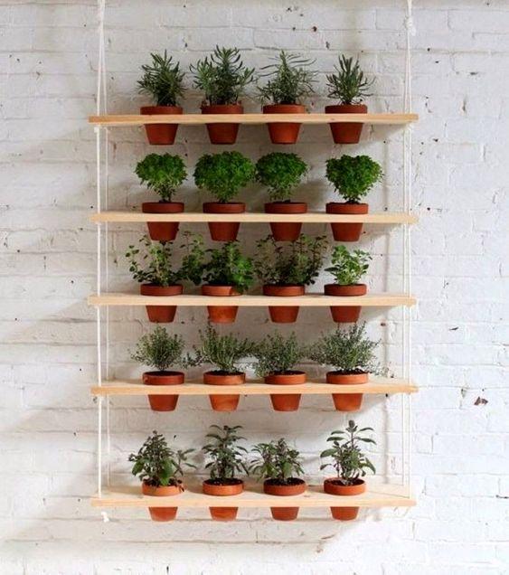 Jardim vertical feito vasos de barro e prateleiras de madeira.