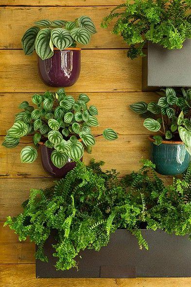 Painel de madeira com plantas.