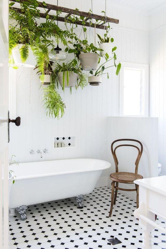 plantas suspensas em banheiro claro