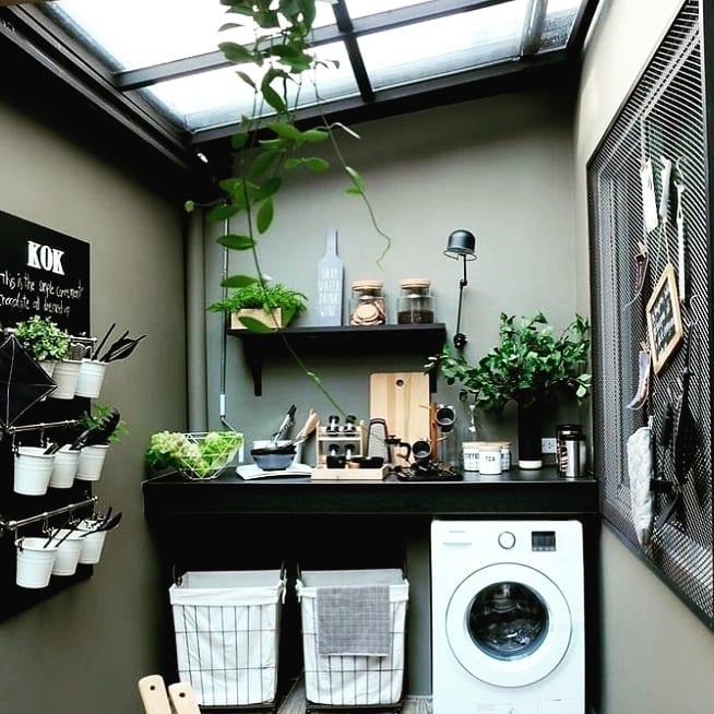 Área de serviço simples com vasos de plantas.