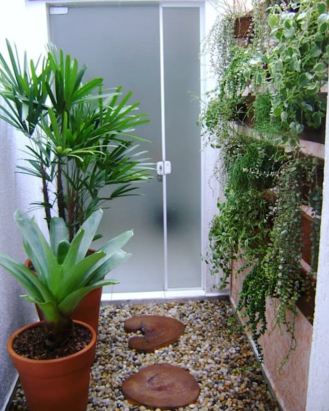 Jardim de inverno vertical.