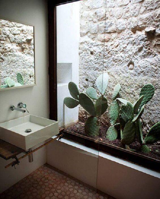 Banheiro simples com jardim de inverno pequeno com cactos.