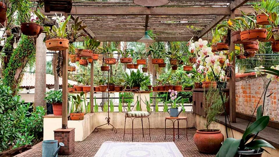 Área externa com muitos vasos de plantas suspensos.