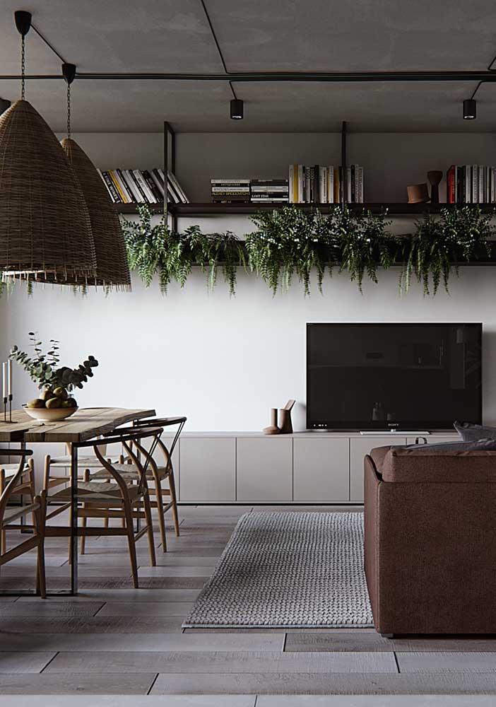 Sala de estar moderna com prateleira para livros e plantas.