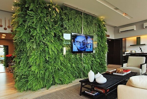 Sala moderna com jardim vertical com samambaias.