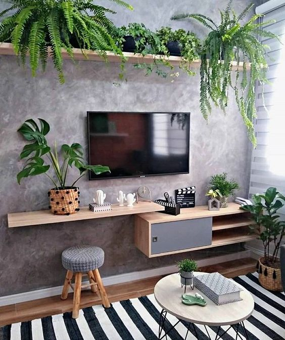Sala pequena e simples decorada com plantas.