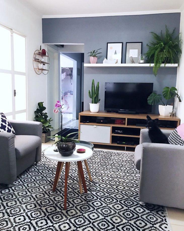 Sala pequena e simples decorada com plantas e parede cinza.