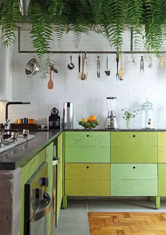 Cozinha com armários verdes e samambaias.
