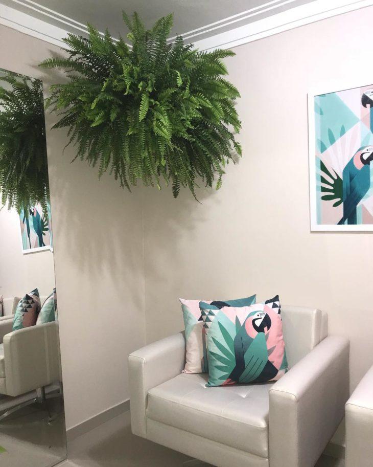 Sala decorada com samambaia.