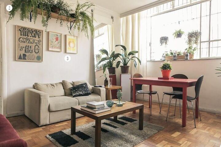 Sala simples decorada com plantas.