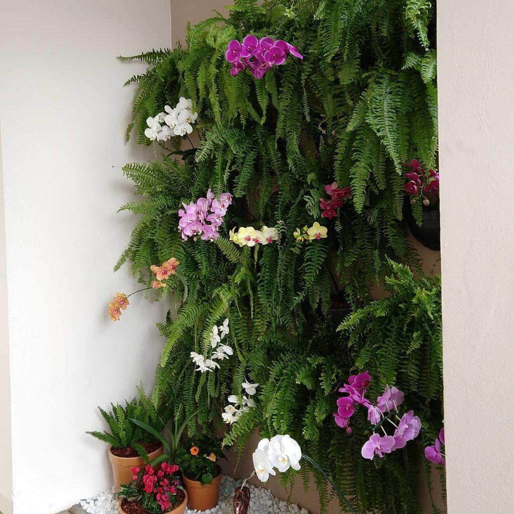 Jardim vertical com samambaias e orquídeas.