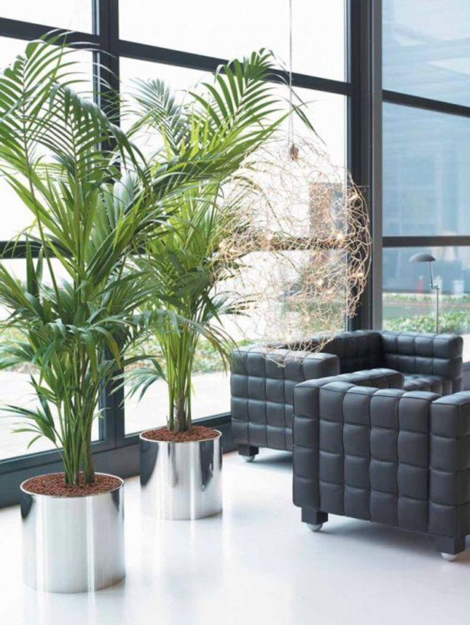 Sala de espera decorada com vasos de planta de aço inox.