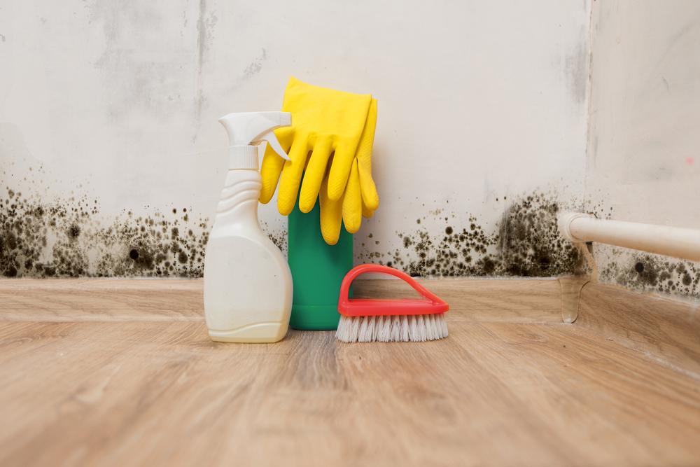 Parede com mofo e um borrifador, luvas e escova no chão.