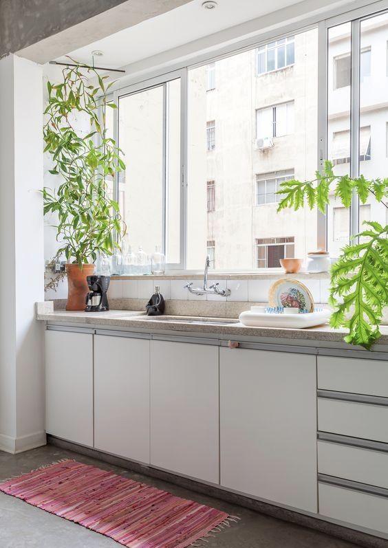 Cozinha simples com vasos de plantas.