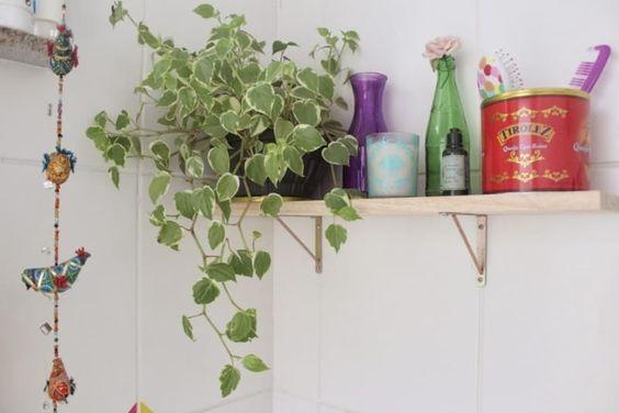 Vaso de plantas pendurado na prateleira no banheiro.
