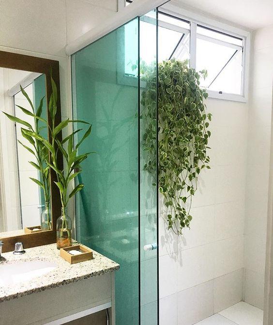 Banheiro com planta na janela.