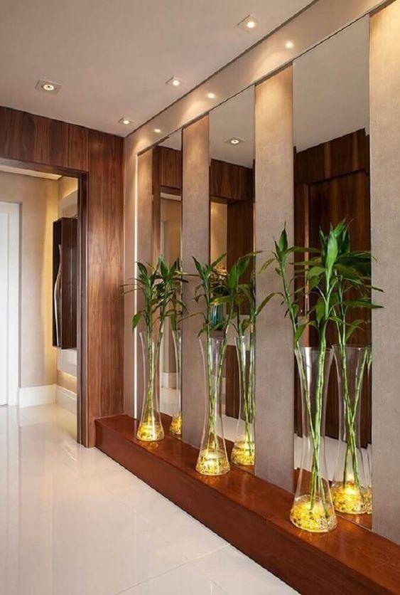 Prateleira com três vasos de bambu da sorte.