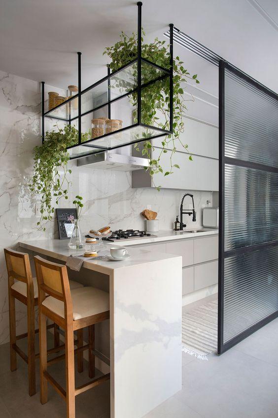Dois vasos de plantas para dentro de casa nas prateleiras suspensas da cozinha.