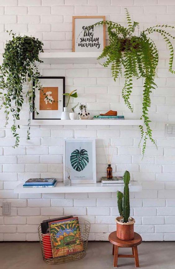 Sala com plantas para dentro de casa na prateleira e no chão.