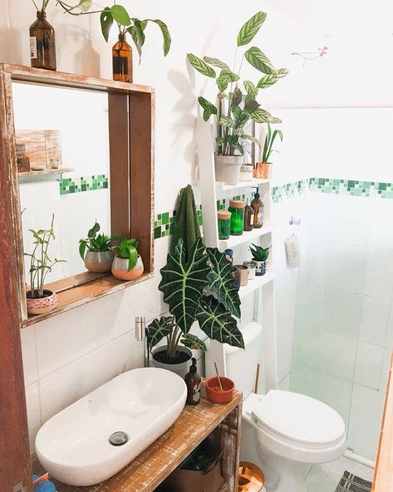 Banheiro pequeno com vários tipos de plantas para dentro de casa.