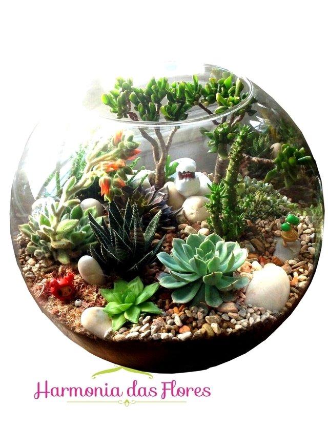 Terrário em aquário com suculentas e seixos rolados.