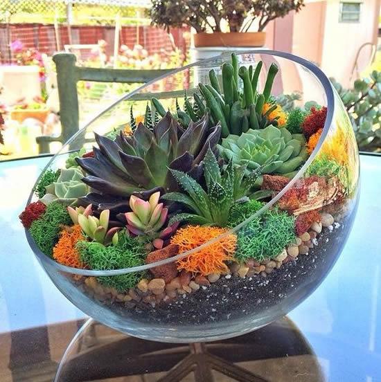 Jardim colorido no vaso de vidro aberto.
