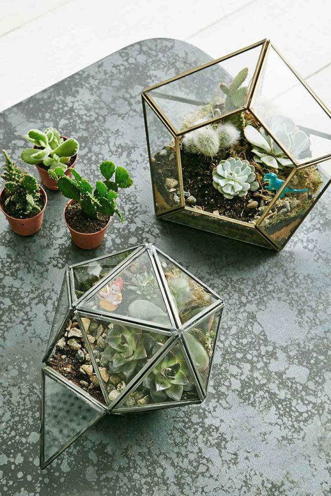 Jardim no vaso de vidro geométrico.