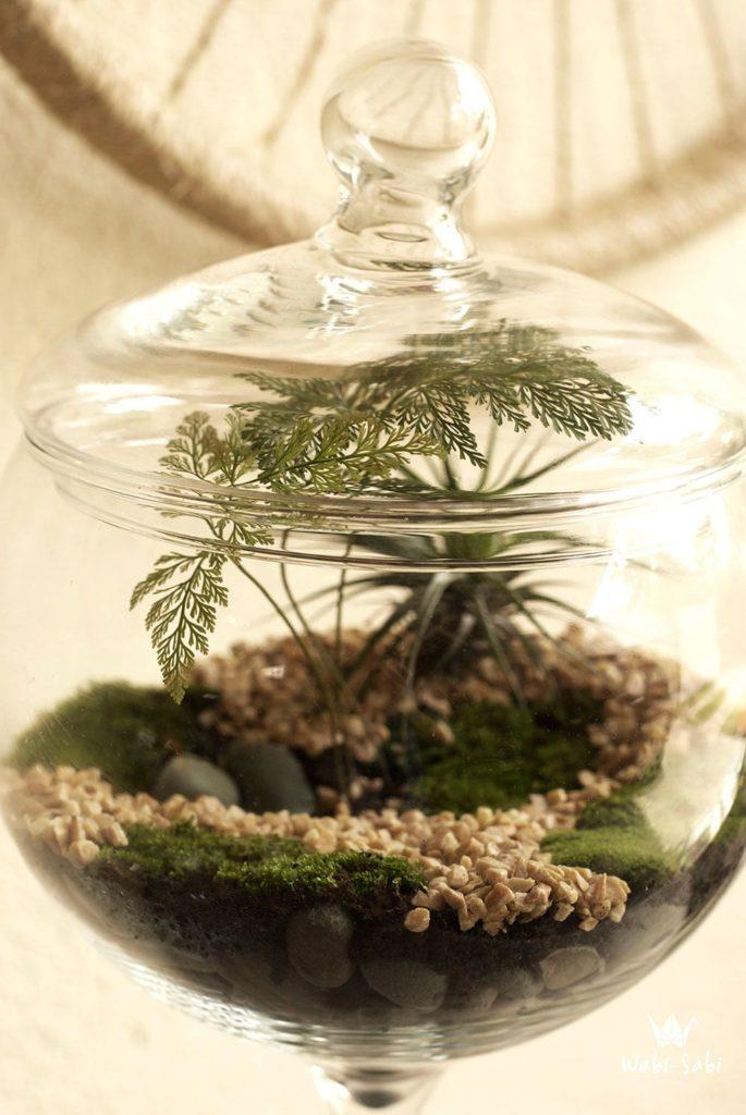 Jardim no vaso de vidro fechado.