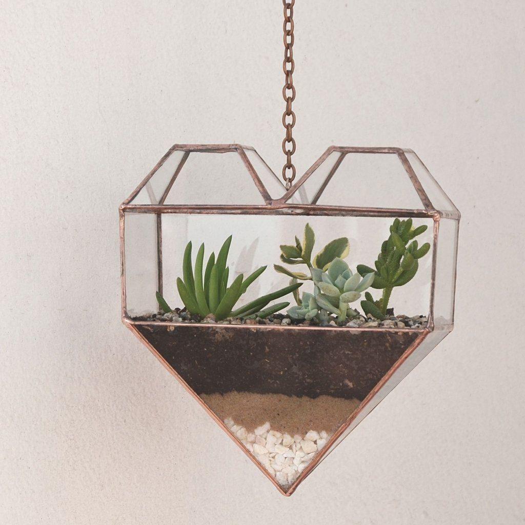 Terrário fechado no vaso de vidro no formato de coração.